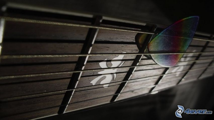 struny, gitara, piórko do gitary