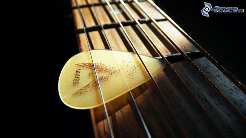 struny, piórko do gitary, gitara