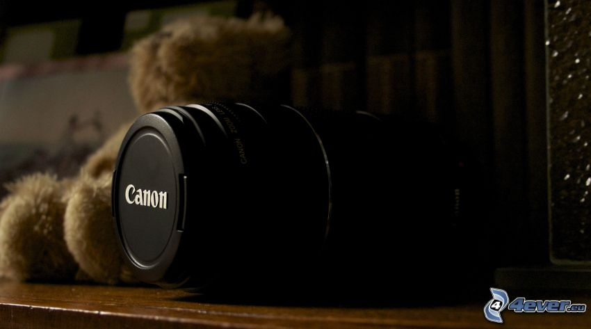 Canon, aparat fotograficzny, miś pluszowy