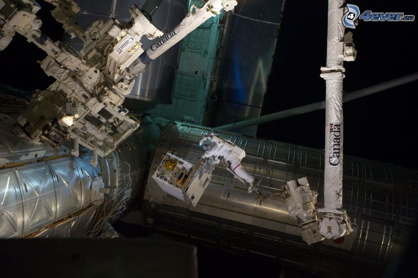 Międzynarodowa Stacja Kosmiczna ISS, astronauta, STS 135