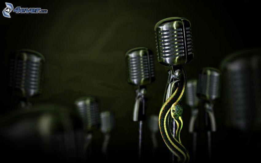 mikrofon, wąż