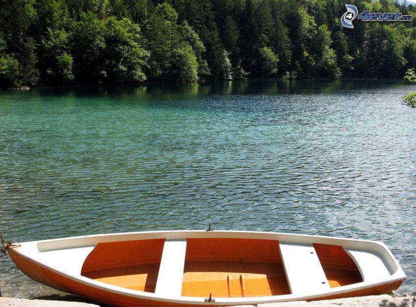 łódka na rzece, las iglasty