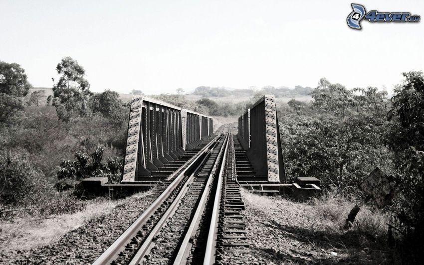 most kolejowy, tory kolejowe