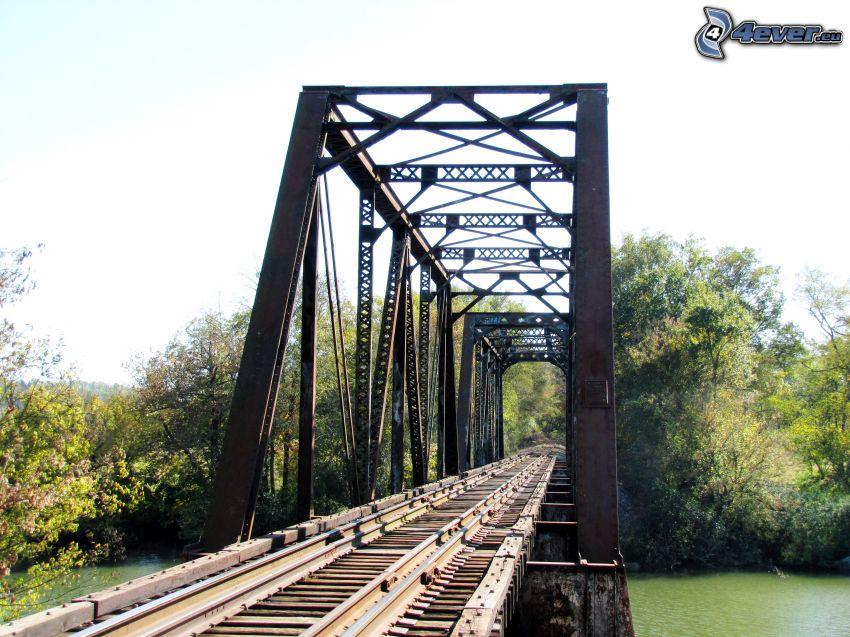 most kolejowy, las, rzeka