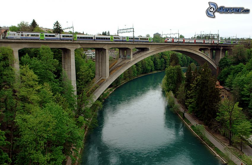 most kolejowy, pociągi, rzeka, las