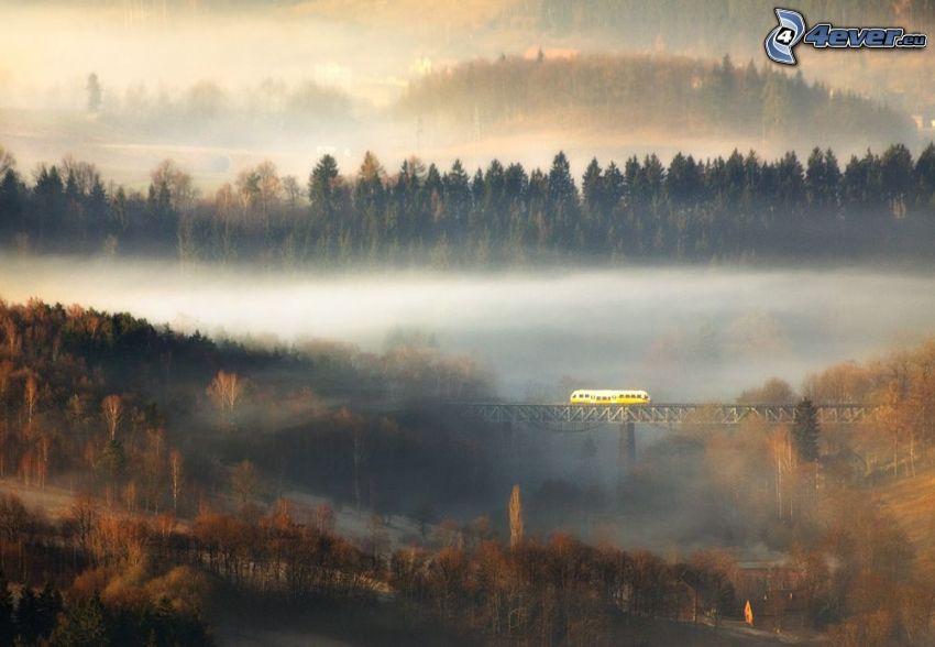 pociąg, most kolejowy, mgła, jesienne drzewa