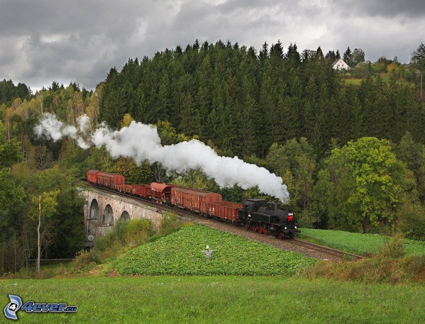 pociąg parowy, dym, kamienny most, las