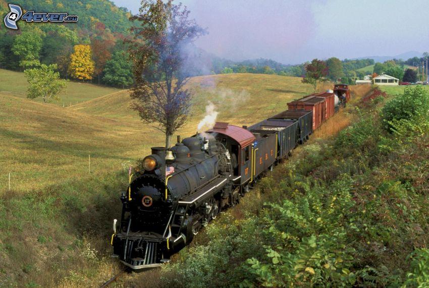 pociąg parowy, pociąg towarowy, jesienny krajobraz