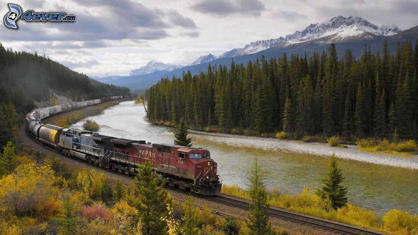 pociąg towarowy, rzeka, las iglasty, zaśnieżone góry