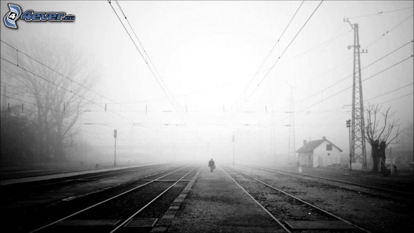 tory kolejowe, człowiek, mgła, czarno-białe