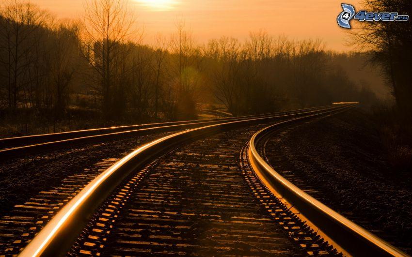 tory kolejowe, sylwetka lasu, pomarańczowe niebo