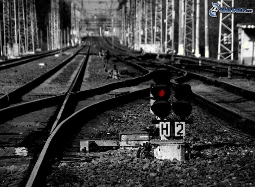 tory kolejowe, zwrotnica, czarno-białe zdjęcie