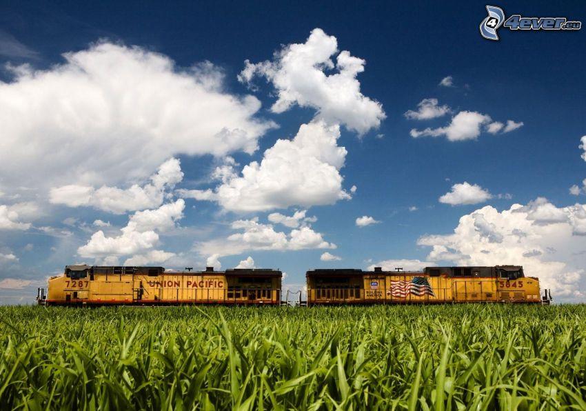 Union Pacific, lokomotywy, pociąg towarowy, pole kukurydzy, chmury