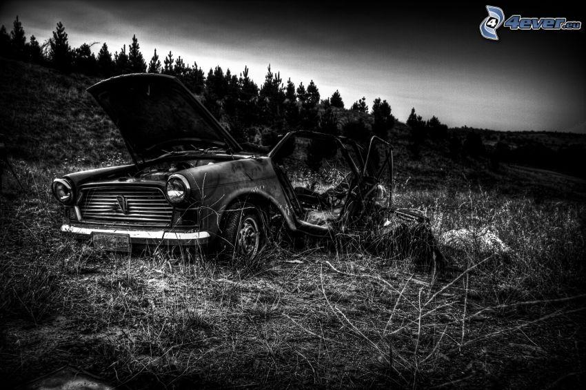 stary zniszczony samochód, pole, czarno-białe zdjęcie