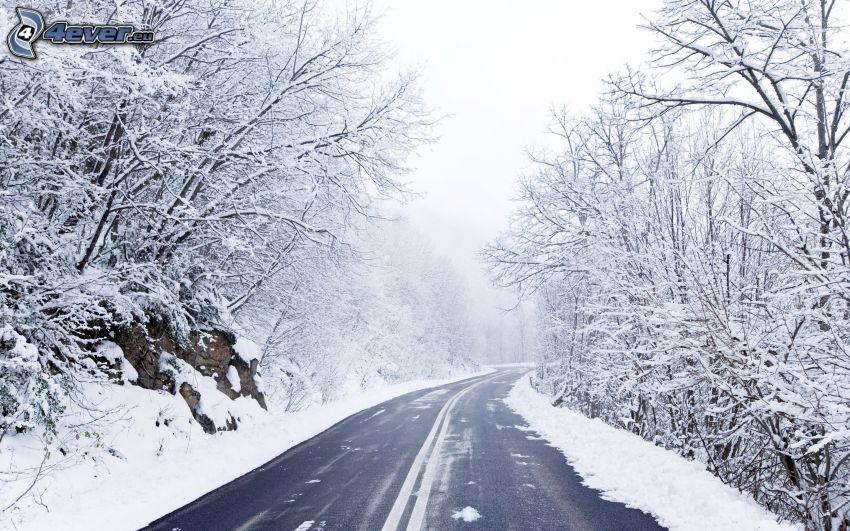 ulica, śnieżny krajobraz