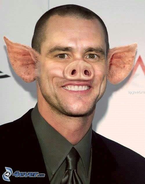 Jim Carrey, świnia