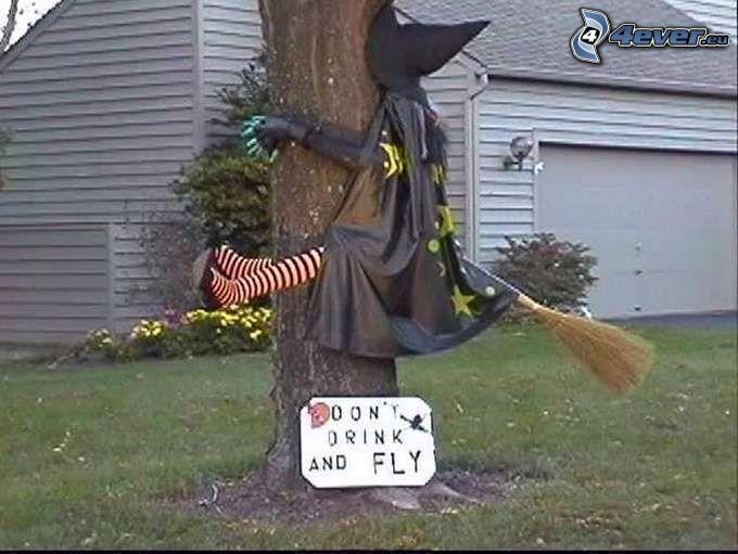 czarownica, alkohol, drzewo, miotełka