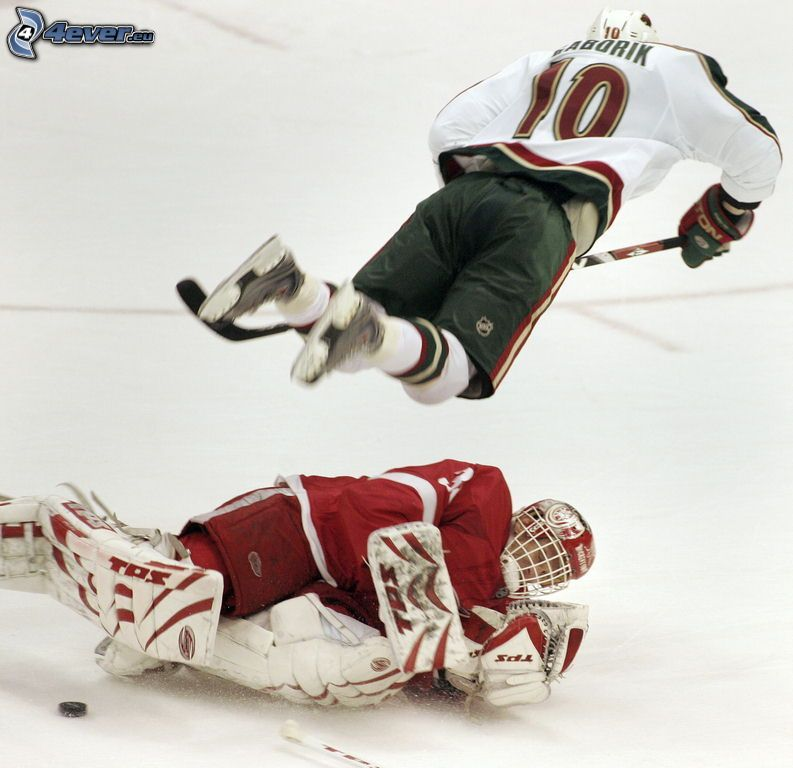 migawka, NHL, hokeiści, hokej, bramkarz, Jaroslav Hašek, Marián Gáborík