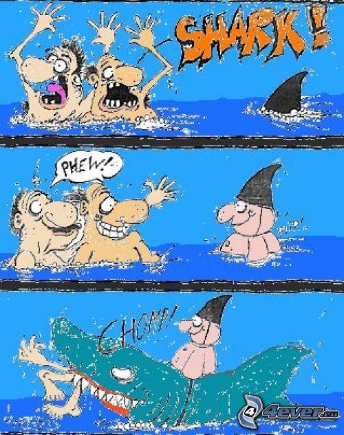 rekin, morze, śmiech, człowiek, łup