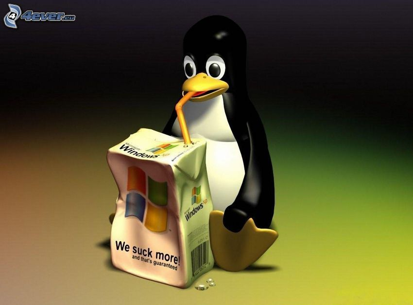 Linux, Windows, napój, słomka