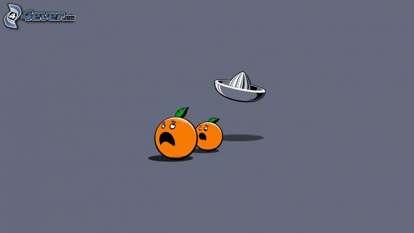 pomarańcze, sokowirówka, strach