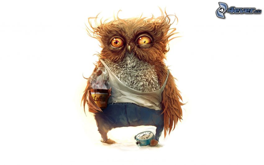rysunkowa sowa, zmęczenie, budzik, kawa, brązowa sowa