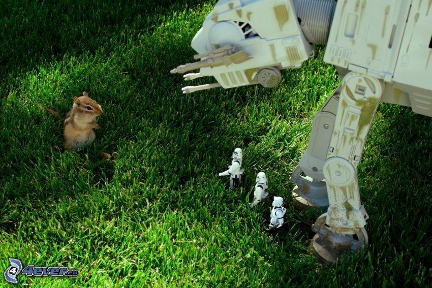 Star Wars, parodia, wiewiórka na trawie