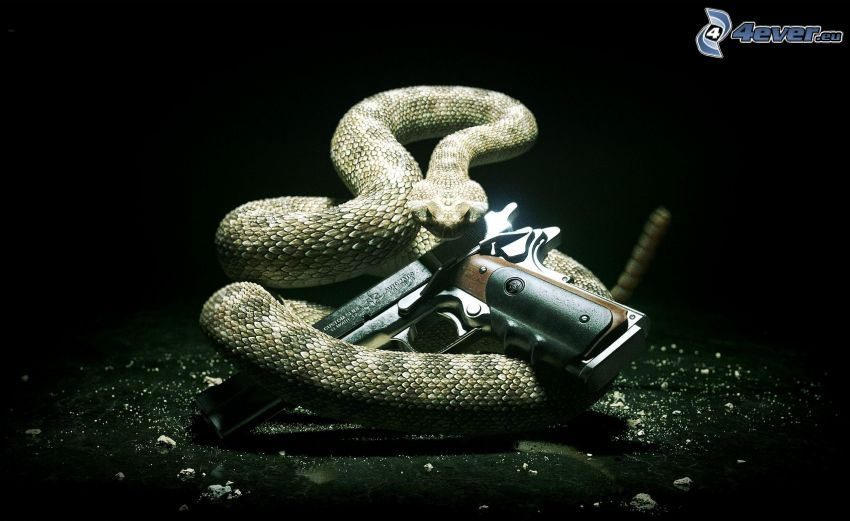 Hitman, wąż, pistolet