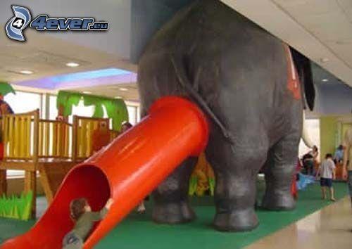 zjeżdżalnia, słoń