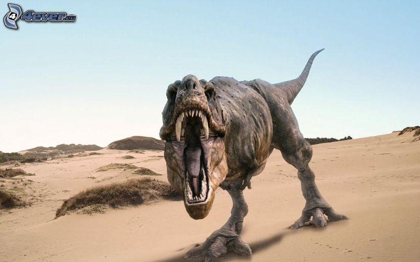 dinozaur, pustynia, ryk