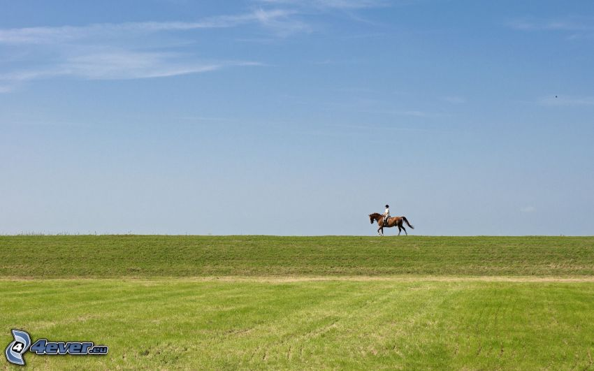 kobieta na koniu, łąka, horyzont