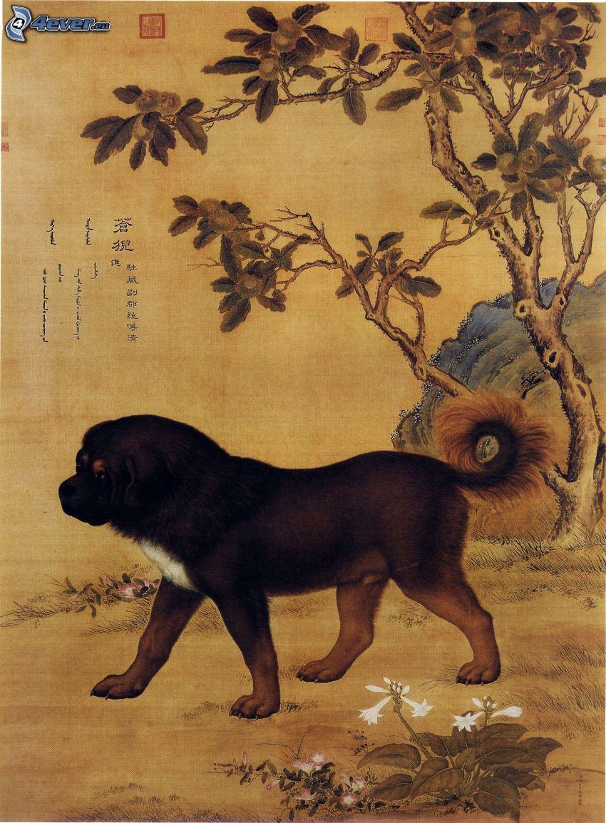 Mastif tybetański, rysowane, chińskie znaki, drzewo