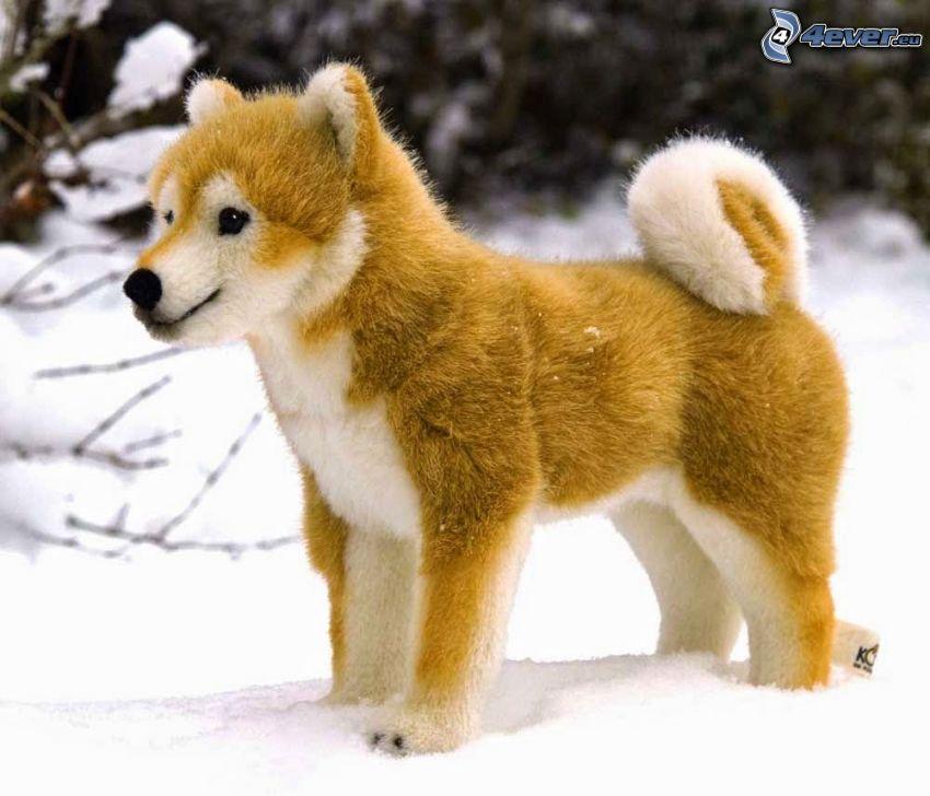 pluszowy pies, Shiba-inu, śnieg