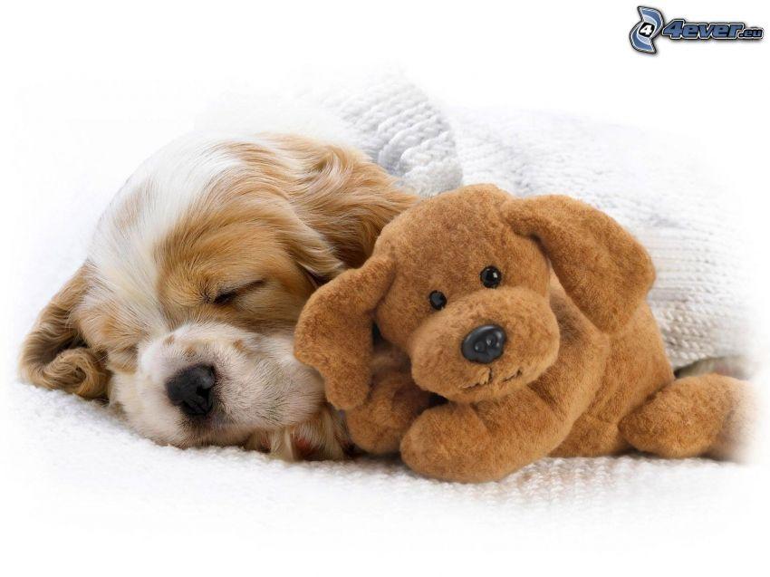 śpący szczeniak, pluszowy pies
