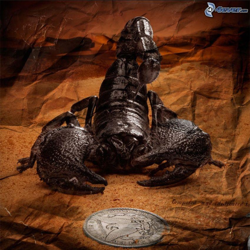 skorpion, moneta