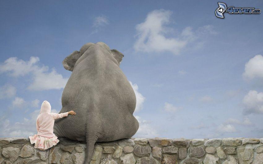 słoń, dziewczyna, chmury, mur