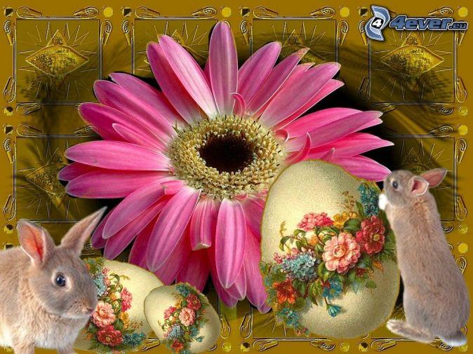 Veľká noc, zajac, kvet, vajce