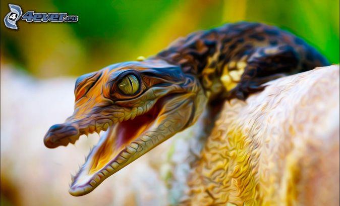 aligátor, digital art