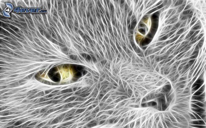 mačacia tvár, oči, biele čiary