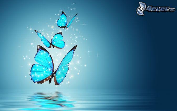 modré motýle, voda, modré pozadie