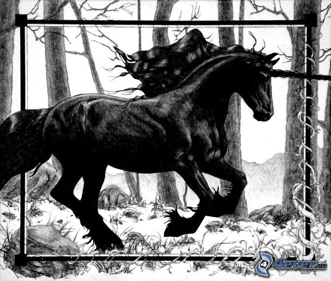 jednorožec, kôň, les