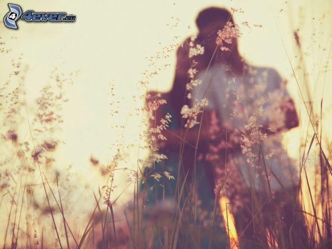 párik, steblá trávy