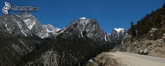 Mount Whitney, skalnaté hory, les