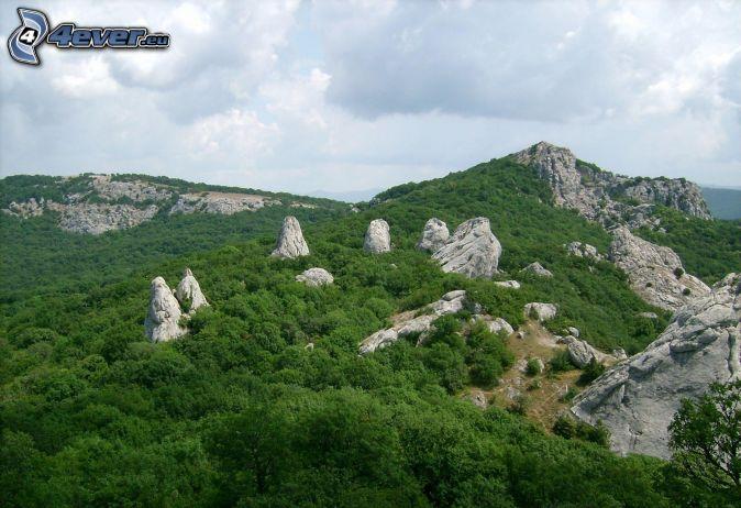 skalnaté hory, les