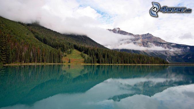 azúrové jazero, skalnaté hory, les