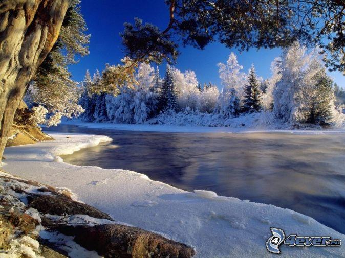 Zalazak sunca  - Page 6 Zamrznuta-rieka-pri-zapade-slnka,-zamrznute-stromy,-zima,-lad-143363