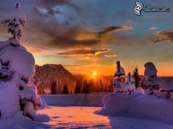 Zalazak sunca  - Page 6 Zimny-zapad-slnka,-zasnezene-stromy-151744