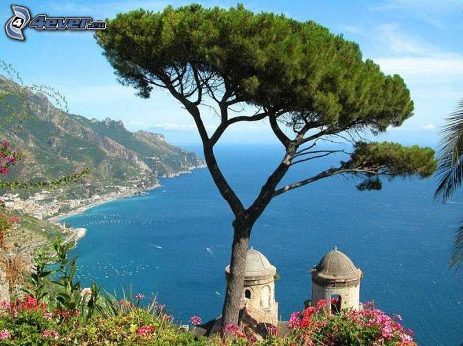 Salerno, taliansko, osamelý strom, pobrežie, more, kaplnka
