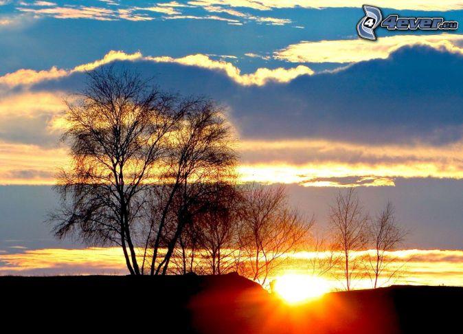 východ slnka, siluety stromov, oblaky