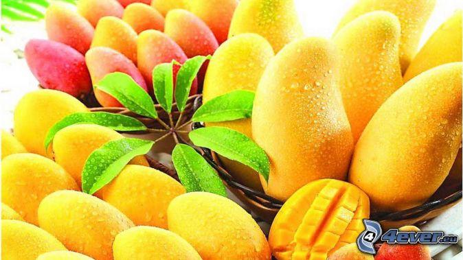 Mango background tumblr